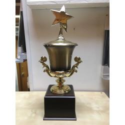 Large Cup Trophy