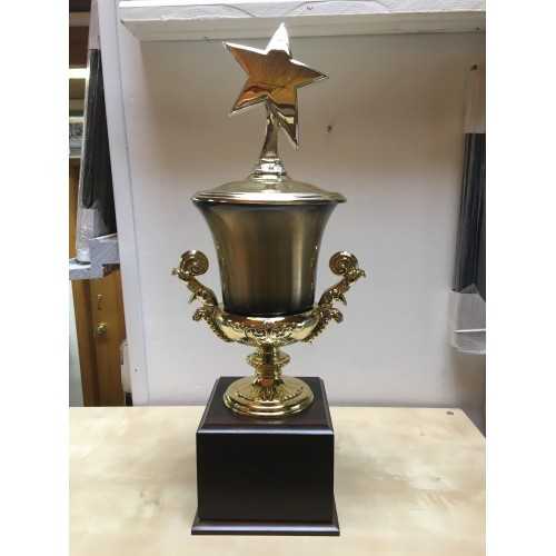 Large Cup Trophy