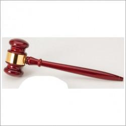 Les Miles Autographed Mini Helmet
